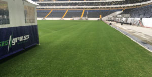 Rostov Stadium pitch